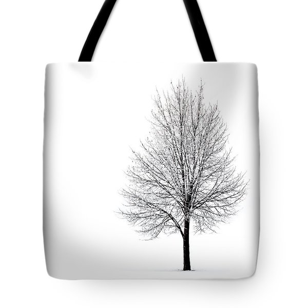 Tote Bag featuring the photograph She Said She'd Come by Yvette Van Teeffelen