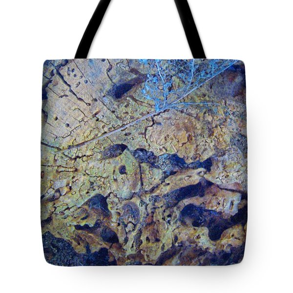 She Speaks Of Moon Time Tote Bag