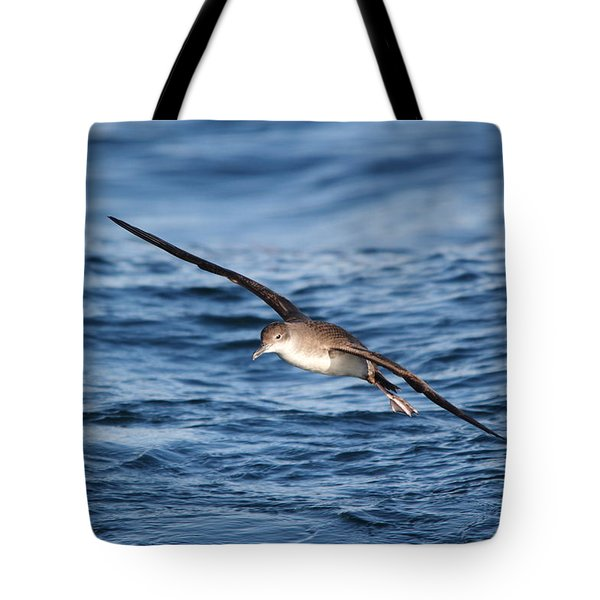 Tote Bag featuring the photograph Shearwater by Richard Patmore