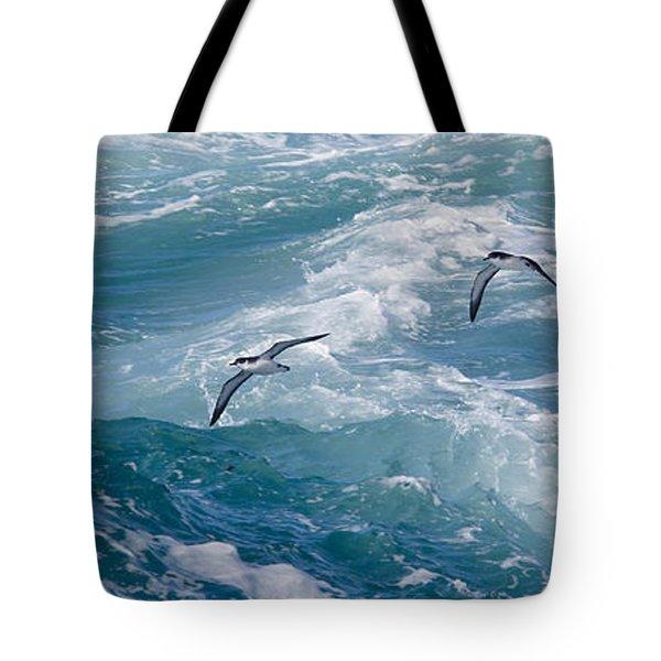 Shearwaters Tote Bag