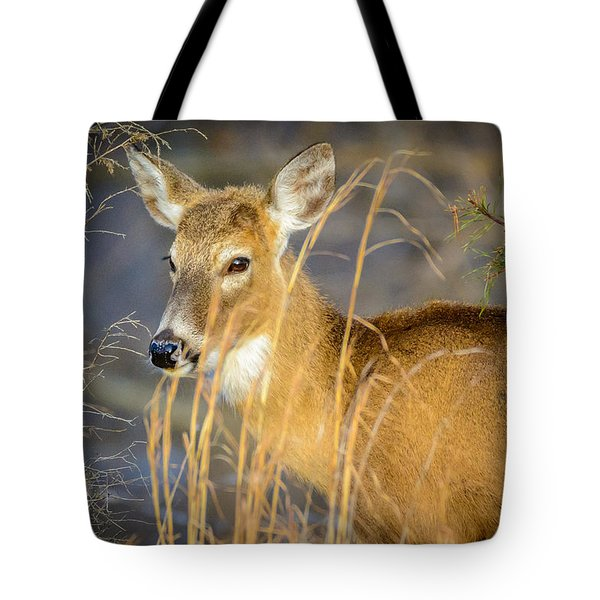 Shed.... Tote Bag