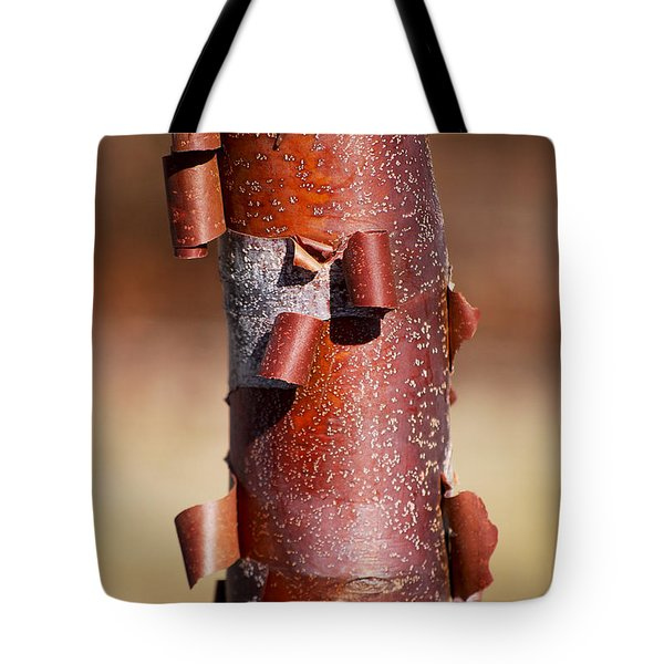 #sheddingthepast Tote Bag by Becky Furgason