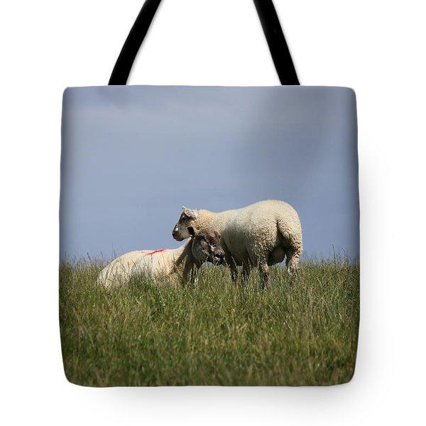 Sheep 4221 Tote Bag