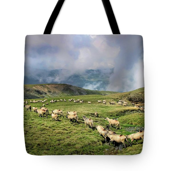 Sheep In Carphatian Mountains Tote Bag