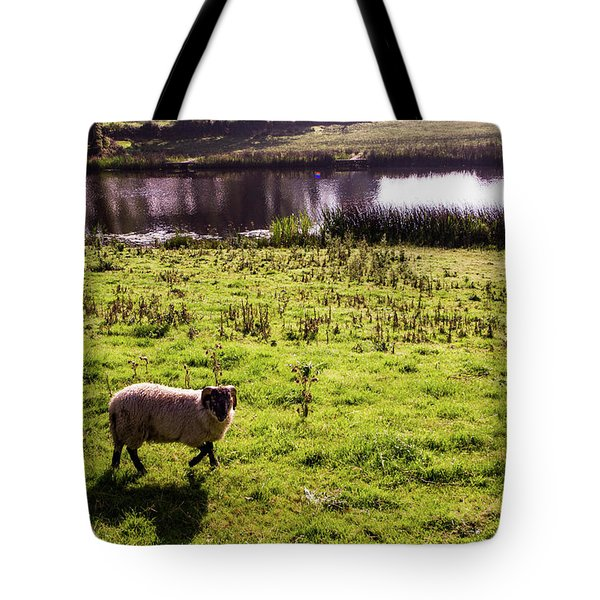 Sheep In Eniskillen Tote Bag