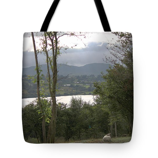 Sheep Near Lough Eske Tote Bag