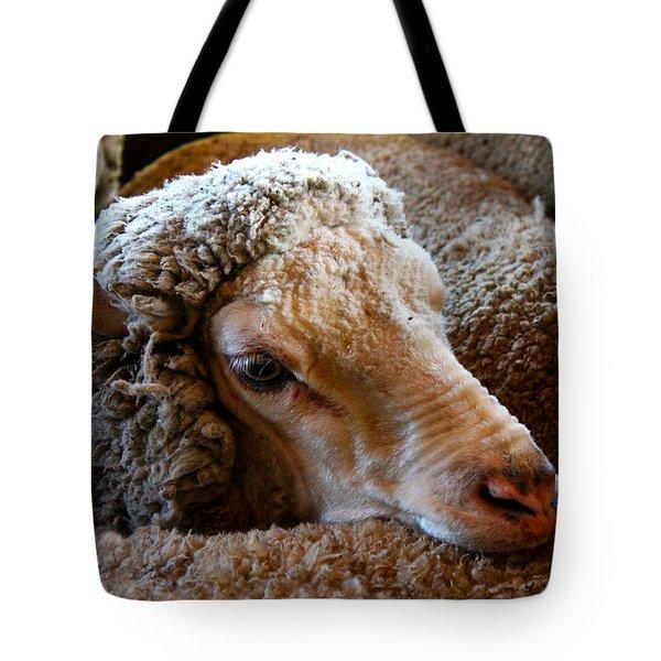 Sheep To Be Sheared Tote Bag
