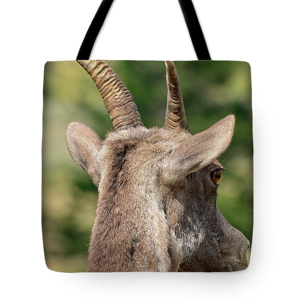 Tote Bag featuring the photograph Sheepish Look by Bruce Gourley