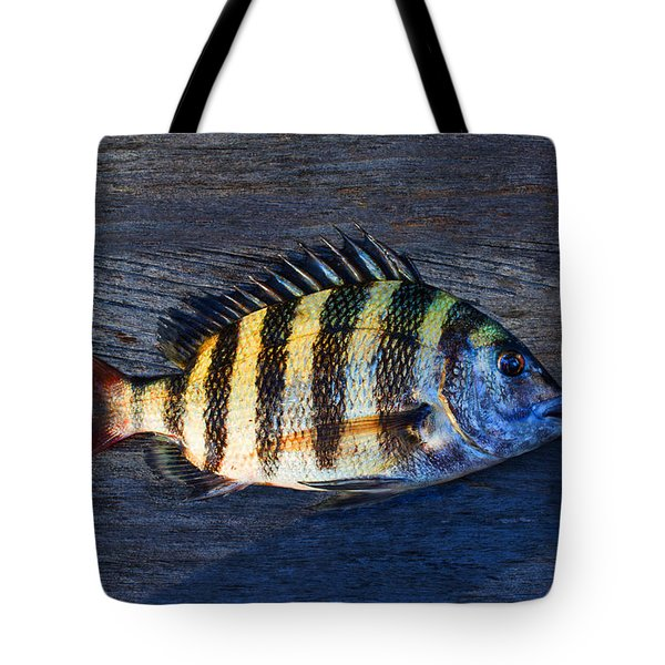 Tote Bag featuring the photograph Sheepshead Fish by Laura Fasulo