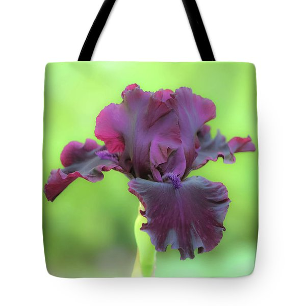Tote Bag featuring the photograph Sheer Elegance by Deborah  Crew-Johnson