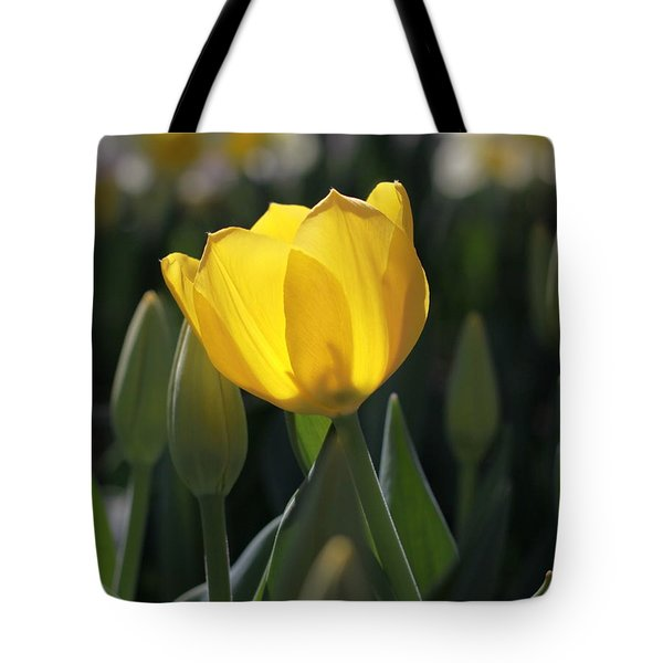 Sheer Yellow Tote Bag