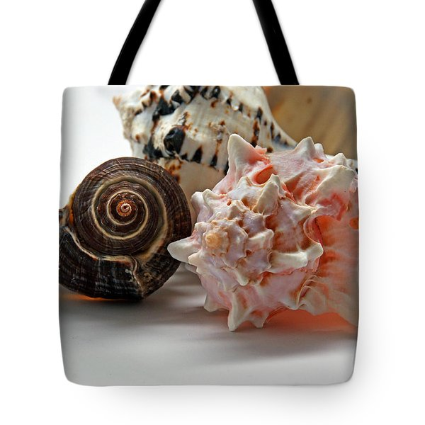 Tote Bag featuring the photograph Shell Grouping by Lynda Lehmann