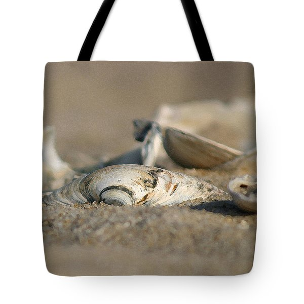 Shell Pile Tote Bag by Mary Haber