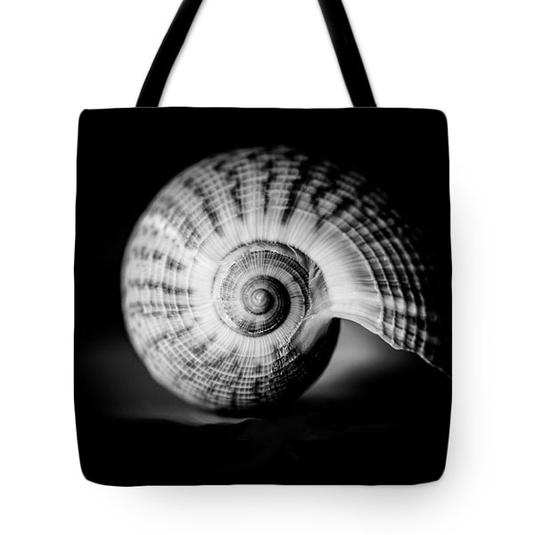 Shell Study No. 001 Tote Bag