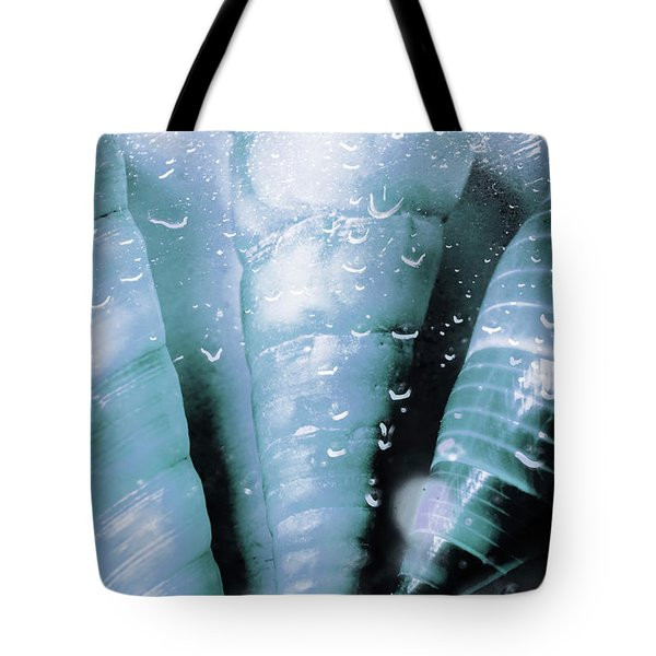Shells And Ocean Spray Tote Bag
