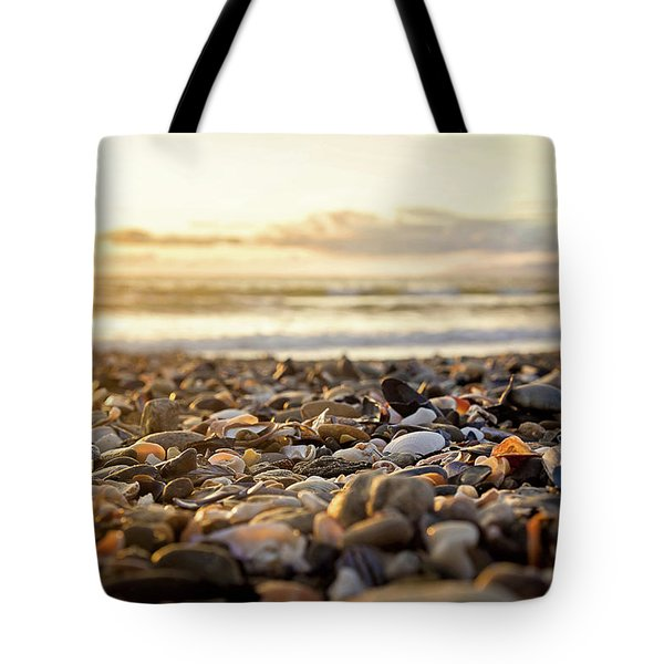 Tote Bag featuring the photograph Shells At Sunset by April Reppucci