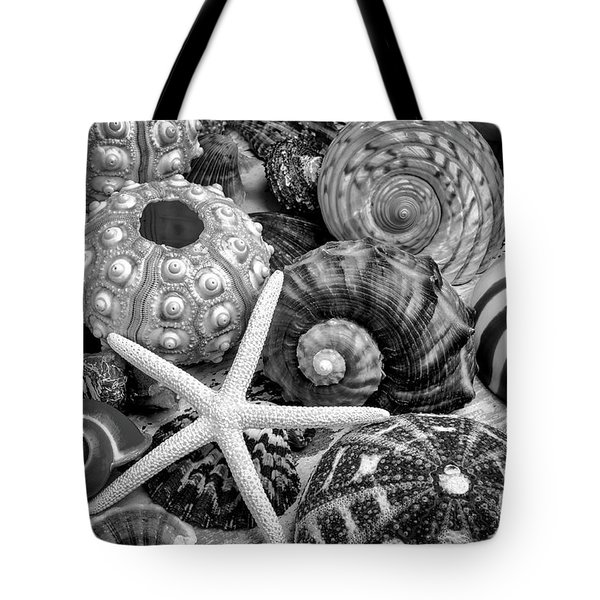 Shells From The Beach Black And White Tote Bag