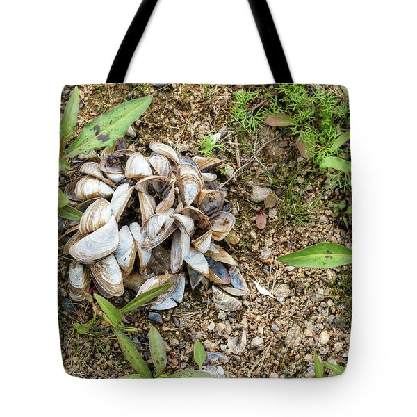 Tote Bag featuring the photograph Shells Of Freshwater Mussels by Michal Boubin