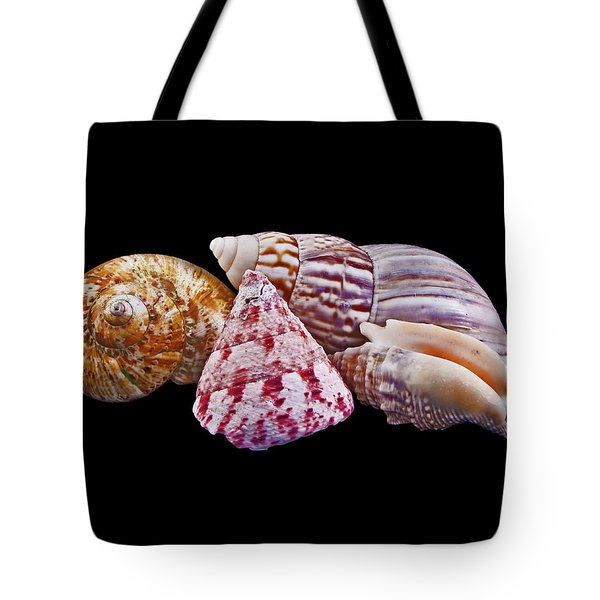 Shells On Black Tote Bag by Bill Barber