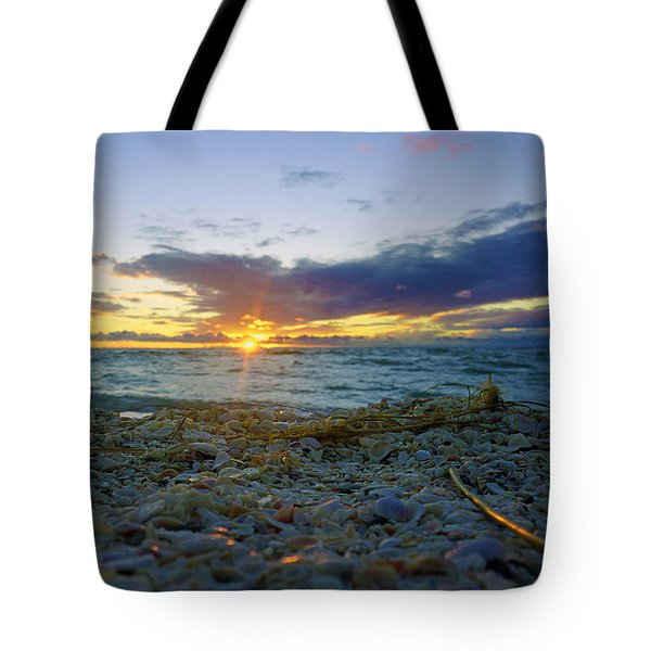 Shells On The Beach At Sunset Tote Bag by Robb Stan