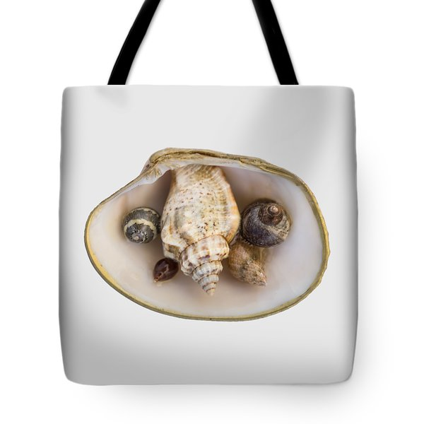 Shells Within A Sea Shell Tote Bag