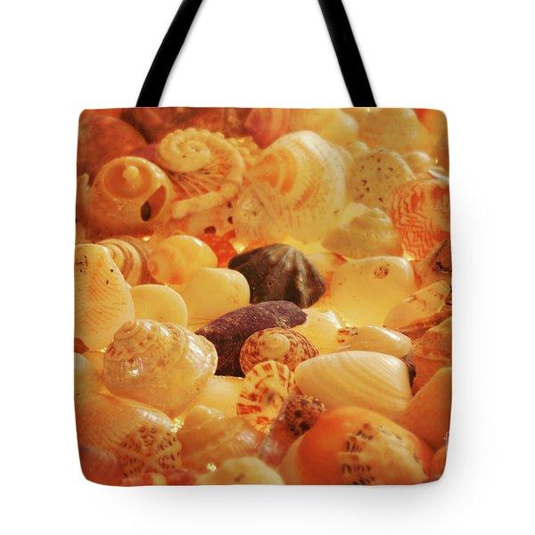 Shells Xvii Tote Bag by Cassandra Buckley