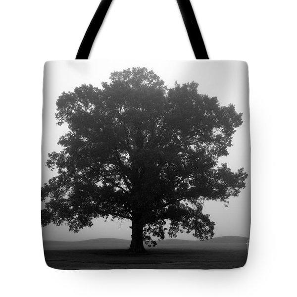 Shelter Tote Bag by Amanda Barcon