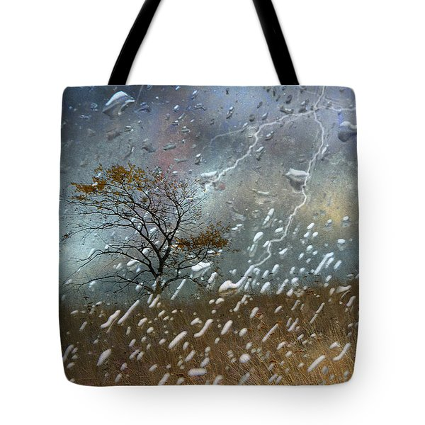 Shelter From The Storm Tote Bag by Ed Hall