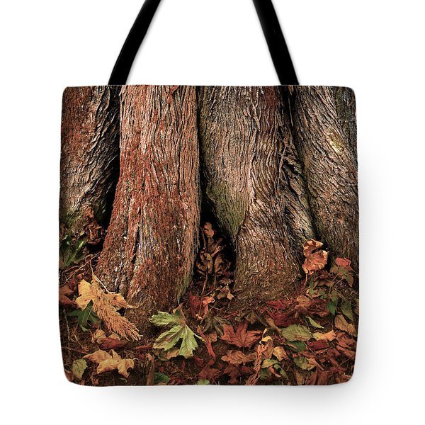 Shelter Tote Bag