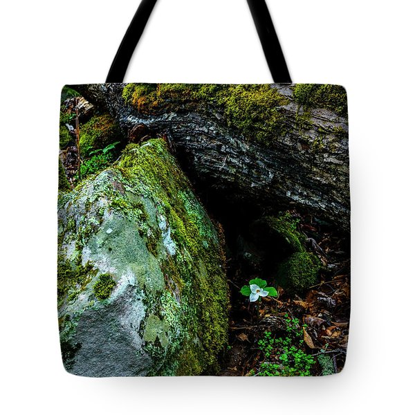 Sheltered By The Rock Tote Bag