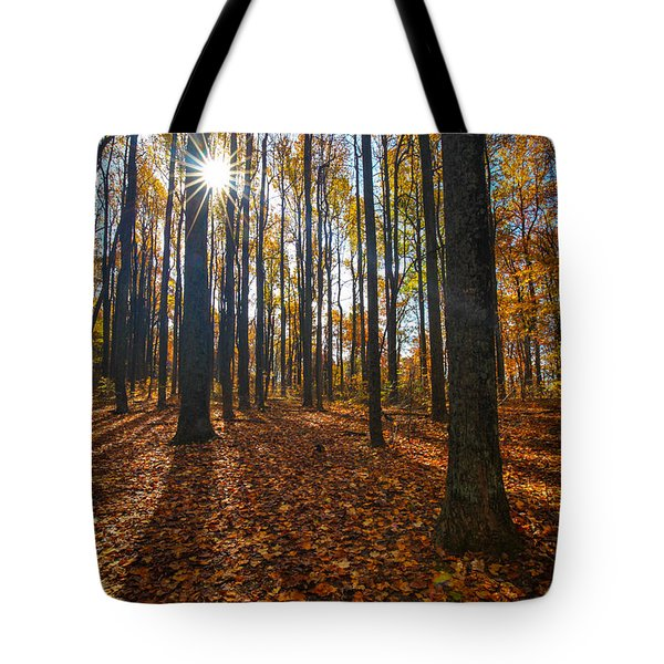 Shenandoah Forest Tote Bag