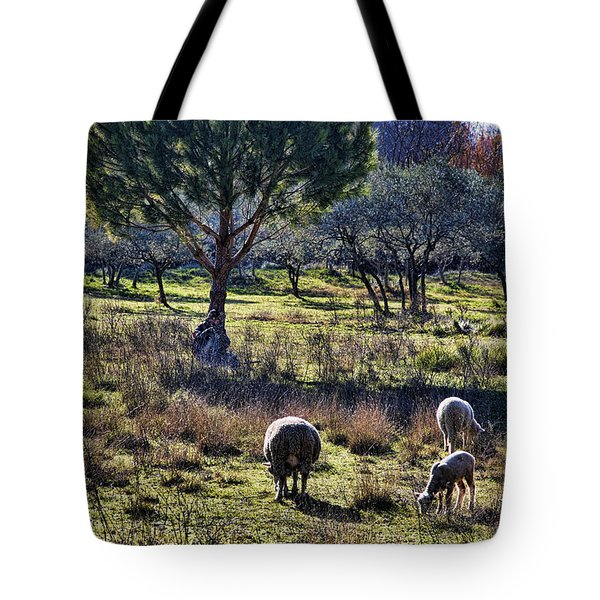 Shepherd And Sheep Tote Bag