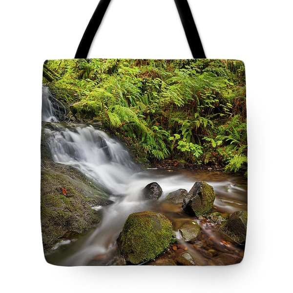 Shepperd's Dell Falls Tote Bag by David Gn