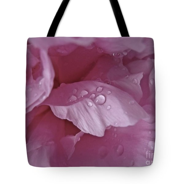 Sherbet Tote Bag by Tim Good