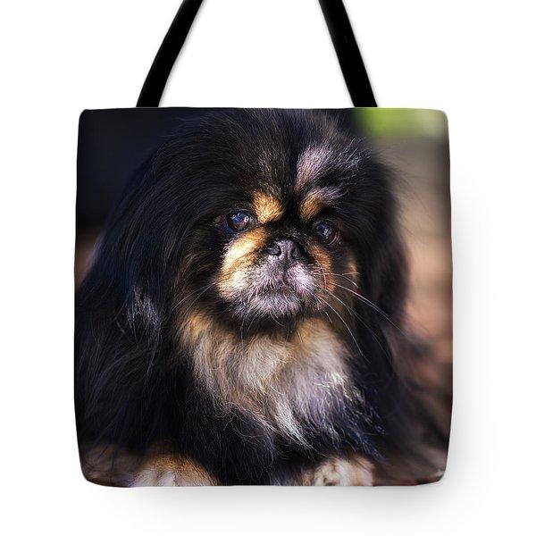 Sherman Portrait Tote Bag by Ryan Manuel