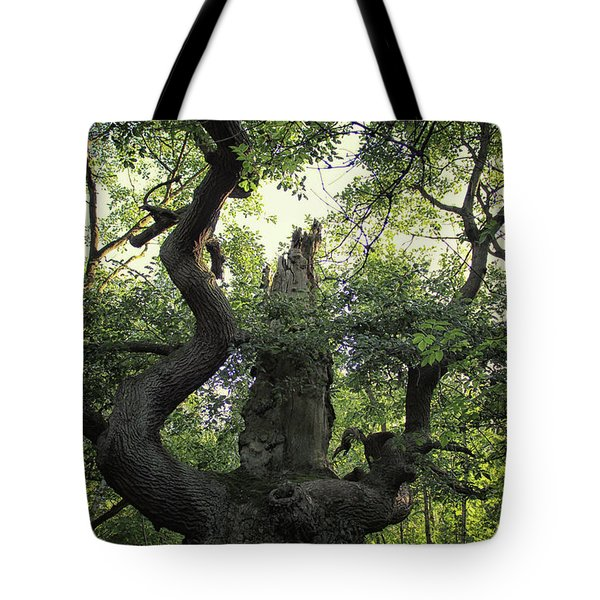 Sherwood Forest Tote Bag by Martin Newman