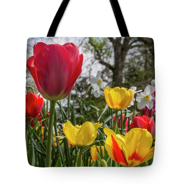 Tote Bag featuring the photograph Sherwood Gardens 17 by Chris Scroggins