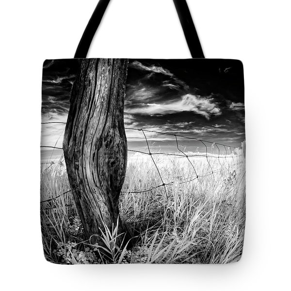 She's Got Legs Tote Bag by Dan Jurak