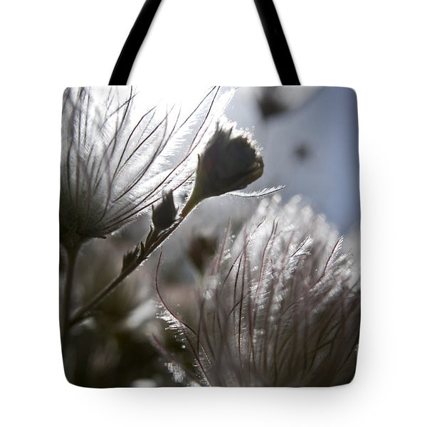 Shimmering Flower II Tote Bag by Ray Laskowitz - Printscapes