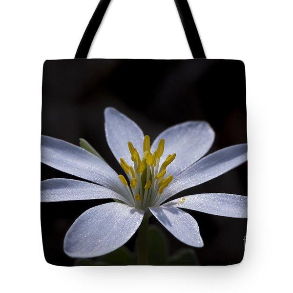 Shimmering Petals Tote Bag