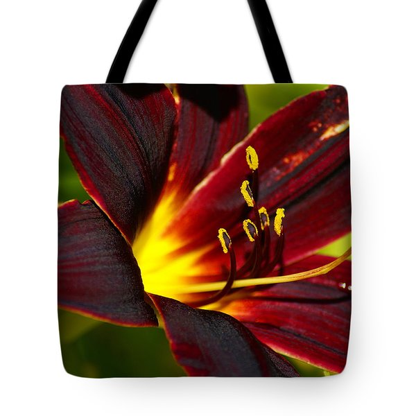 Tote Bag featuring the photograph Shine From Within by Ben Upham III