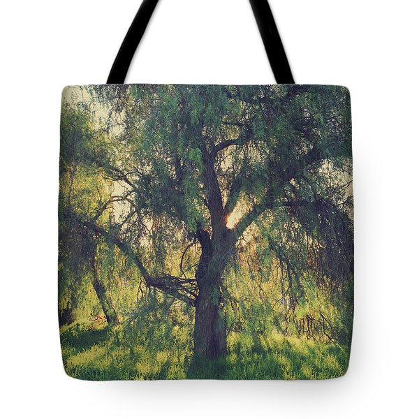 Shine Your Light Tote Bag by Laurie Search