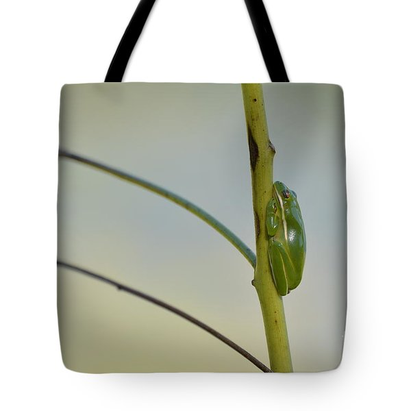 Tote Bag featuring the photograph  Doris Day Shining Bright by Kathy Gibbons