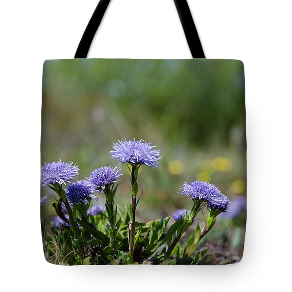 Tote Bag featuring the photograph Shiny Blue Diasies by Kennerth and Birgitta Kullman