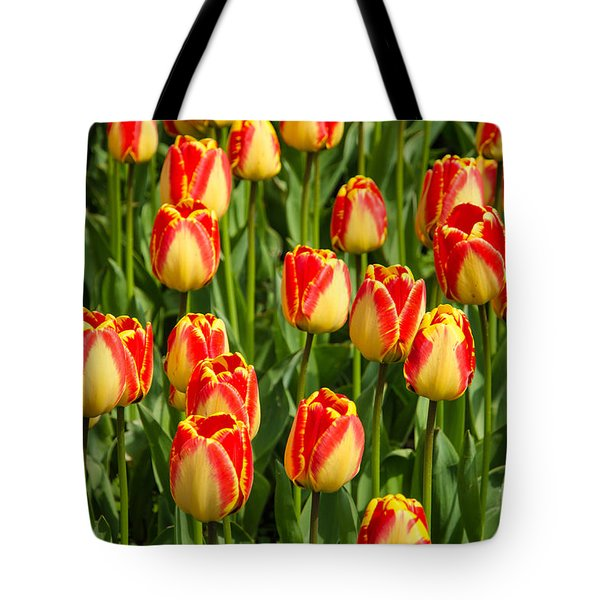 Tote Bag featuring the photograph Shiny Tulips by Kennerth and Birgitta Kullman