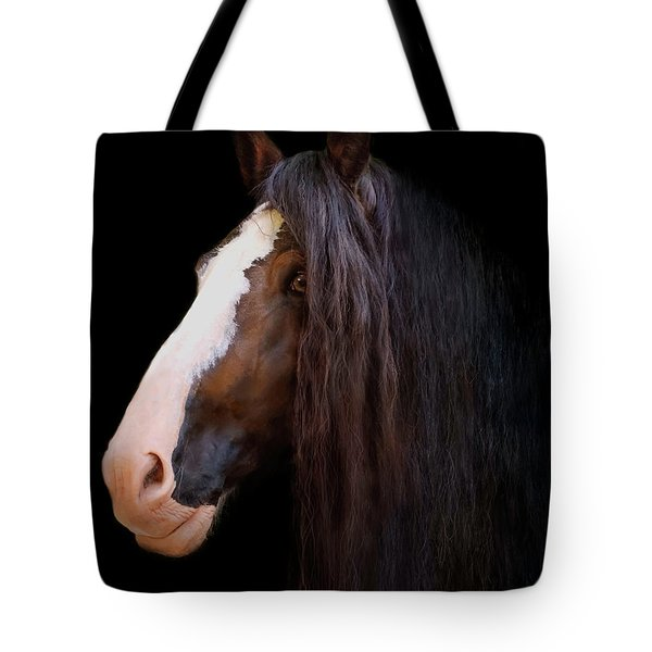 Shire In The Shadows Tote Bag