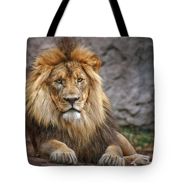 Tote Bag featuring the photograph Shombay by Elaine Malott