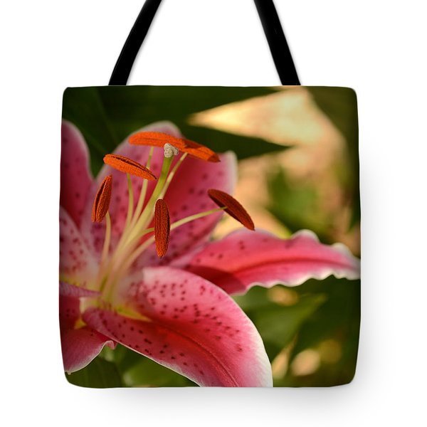 Shooting Star Tote Bag by Wanda Brandon
