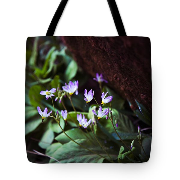 Tote Bag featuring the photograph Shooting Stars by Laura Roberts