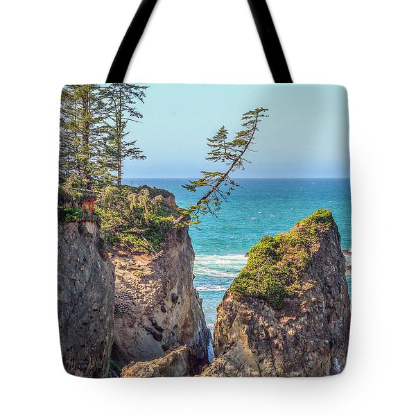 Tote Bag featuring the photograph Shore Acres by Dennis Bucklin